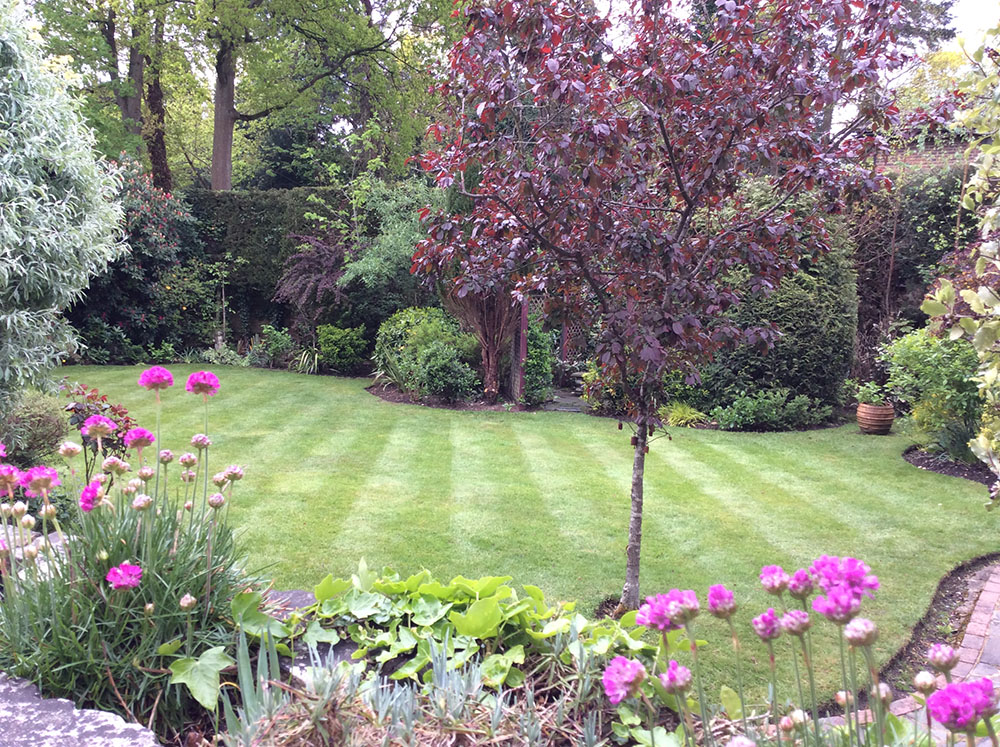 Nice Garden Design. Horticulture Deals With The Art, Science, Technology, And  Business Of Plant Cultivation. Ingrid Applies Her Knowledge And Skills In  Plant ...