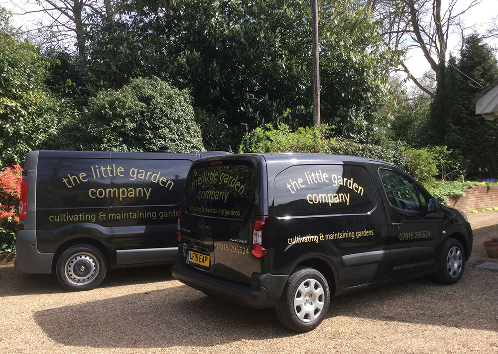 The Little Garden Company Camberley Area Garden Design And